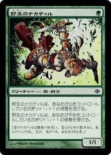 Wild Nacatl / 野生のナカティル